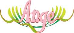 エステシェービング専門店 アロマエステ・理美容室Ange (アンジュ)